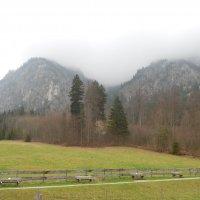 Утро в Альпах :: Мила