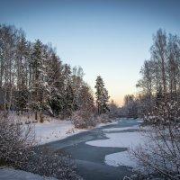 Зима пришла :: Игорь Хохлов