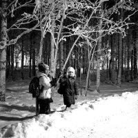Дорога из школы домой. :: Алексей Хаустов