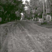 Сельская улица. :: Владимир