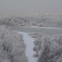 Омск-ноябрь :: Savayr