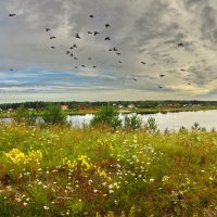 Лето на Кубене - реке :: Валерий Талашов