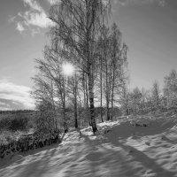 Солнце :: Николай Айб