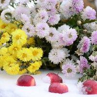 Яблоки в снегу и хризантемы :: galina tihonova
