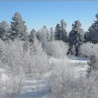 Волшебно,морозно и снежно. :: Владимир Тюменцев