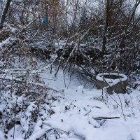Снегу навалило :: Юрий Хворостенко