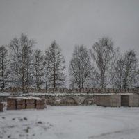 Соседки-подружки :: Анатолий Корнейчук