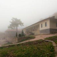 В тумане :: Владимир Колесников