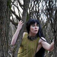 В осеннем лесу... :: Наталья Rosenwasser