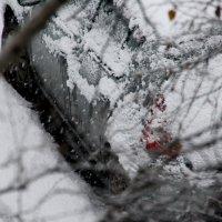 А  снег  не знал  и  падал.... :: Валерия  Полещикова