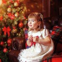 новогодняяя :: Света Солнцева