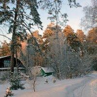 Домик в лесу :: И.В.К. ))