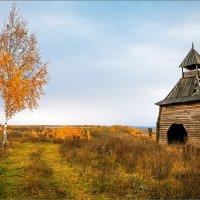 Осенняя пасмурная... :: Александр Никитинский
