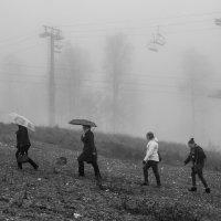 Sochi :: Ксения Закружных