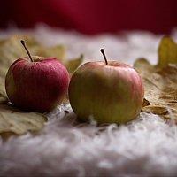 Яблоки в листьях :: Валерий Лазарев