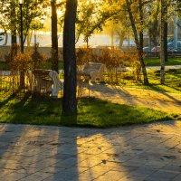 Солнечное настроение :: Игорь Герман