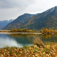 На Телецком озере :: ирина )))