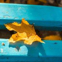 Да , опять осень.... :: Alex Werty