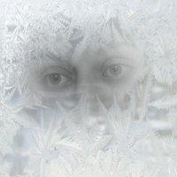 Первые заморозки.... :: Tatiana Markova