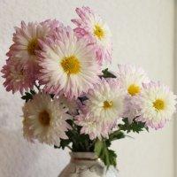 Цветочки :: Ksenia Shelkova