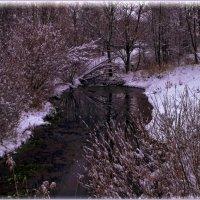 Вот и снова зима... :: Андрей