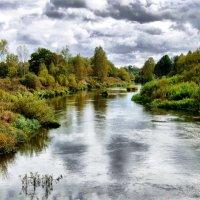 река Жиздра  осень :: Валерий Баранчиков