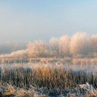 Осень, заморозки, утро.. :: Юрий Стародубцев