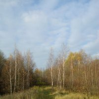 Времена года. Осень :: Андрей Лукьянов