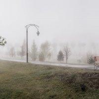 Туман. :: Евгений Герасименко