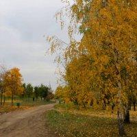 Осеннее убранство. :: Александр Атаулин
