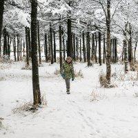 Прогулка по зимнему парку. :: Юрий Харченко
