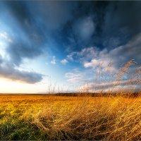 Уж небо осенью дышало... :: Александр Никитинский
