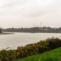 Рейн в тумане и под дождем :: Witalij Loewin