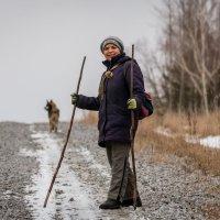 И снова в путь... Встреча на дороге... Серия из пяти фотографий. :: Сергей Щелкунов