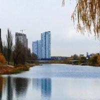 Осень на обводном канале :: Владимир Бровко