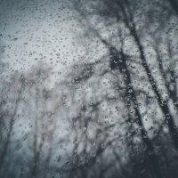Поздняя осень...капли на стекле... :: Дарья Селянкина