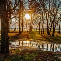 Утро в парке :: Константин Бобинский