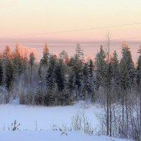 морозное утро :: Надежда Ерыкалина