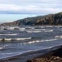 Охотское море в ноябре :: Наталья Литвинчук