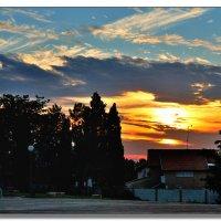 На закате. :: Leonid Korenfeld