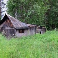 Старый сарай :: Вера Щукина
