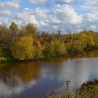 Осенние краски :: Вера Андреева