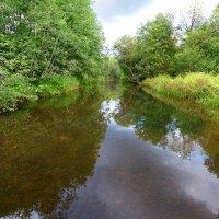 река Пярдомля :: Laryan1