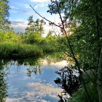 Река-речонка :: Светлана