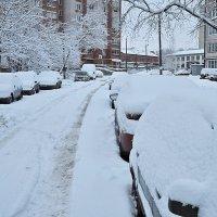 После снегопада! :: Андрей Синицын