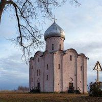 Церковь Спаса на Нередице, 12 век :: Евгений Никифоров