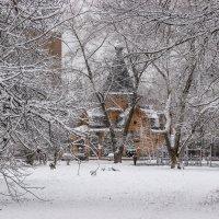 Зима в городе :: Elena Ignatova