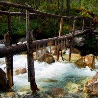 Мост :: Iuliia Beliaeva