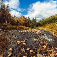 Речка, небо голубое — Это все мое, родное! :: Виталий Нагиев