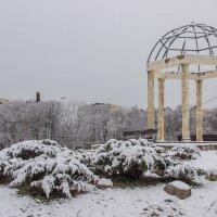 Зимний парк :: Elena Ignatova